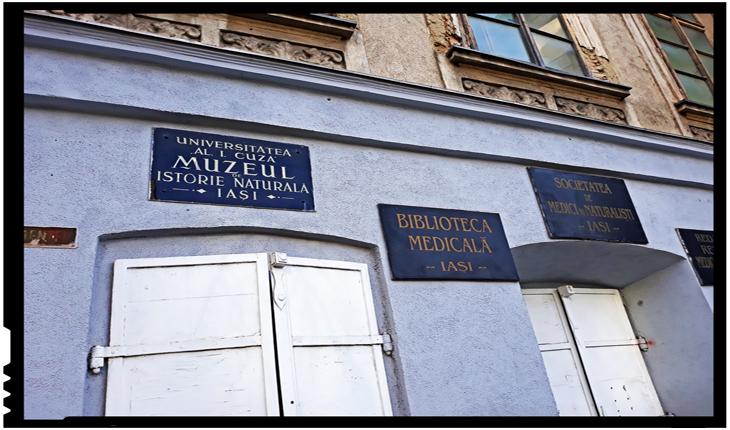 Încep procedurile pentru reabilitarea Muzeului de Istorie Naturală din Iași