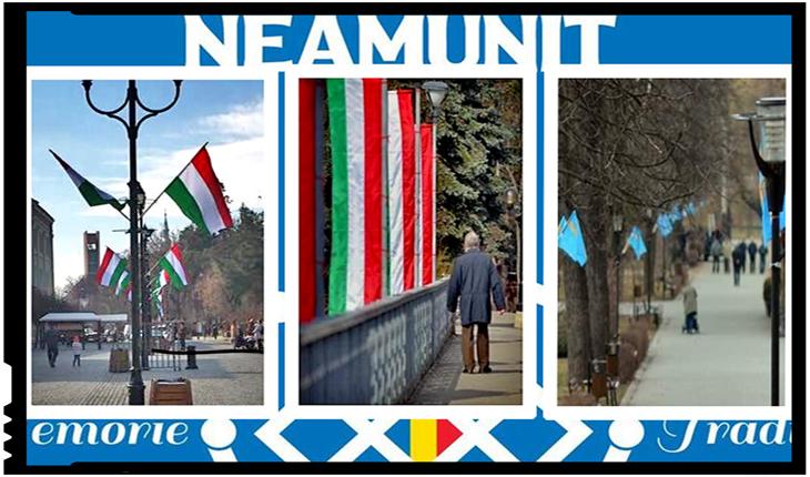 Asociația NEAMUNIT solicită autorităților și clasei politice măsuri pentru respectarea legii în Harghita și Covasna, Foto: facebook.com/Neamunit/