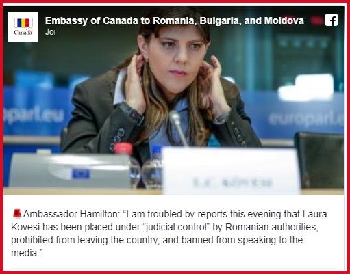 """Miorlăielile """"diplomatice"""" ale ambasadei Canadei în România, foto: facebook"""