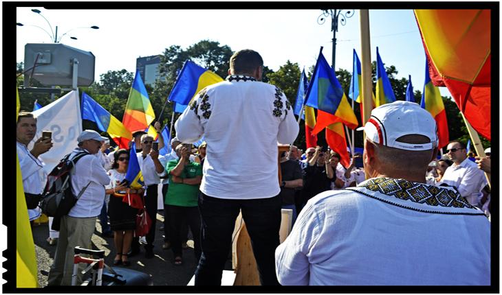 """Poeta Mihaela Aionesei despre mitingul împotriva Codului Administrativ: """"Unul pentru toți și toți pentru România"""""""