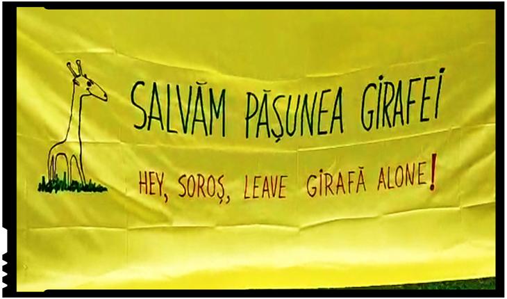 """Protest în fața Muzeului Antipa: """"Salvați pășunea girafei! Hey, Soros, leave Girafă alone!"""""""