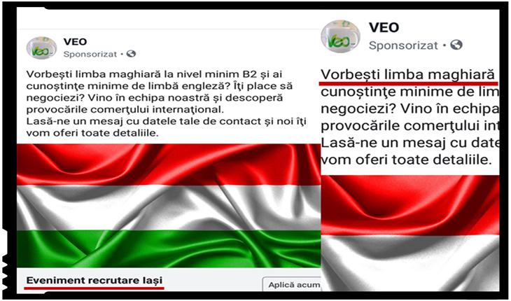"""""""Votanții"""" UDMR de la IAȘI sunt căutați pentru a fi angajați?"""