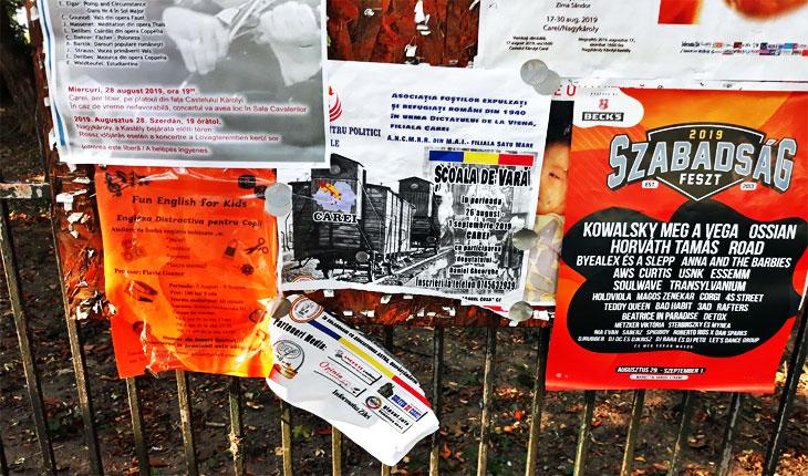 Comemorarea Dictatului de la Viena umbrită de vandalism: afișele Școlii de Vară de la Carei rupte de persoane necunoscute