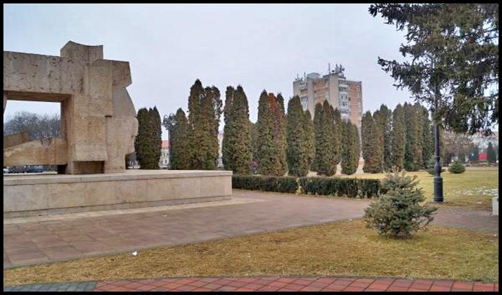 Planul de împădurire al Primăriei pentru ascunderea simbolului românesc Monumentul Ostaşului Român a dat roade, Foto: Buletin de Carei