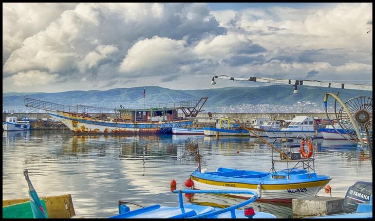 Ziua Mondială a Pescuitului: țările riverane Mării Negre se reunesc pentru a asigura sustenabilitatea resurselor marine