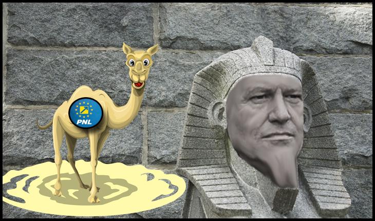 """Liviu Pleșoianu: """"Nu particip la ceremonia de întronare a Faraonului din Cotroceni"""""""