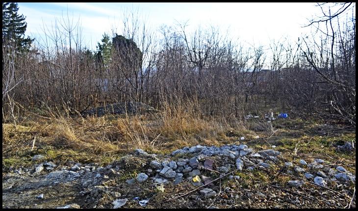Suprafața de teren din Iași pe care ar urma să fie construit acest adăpost antiavort