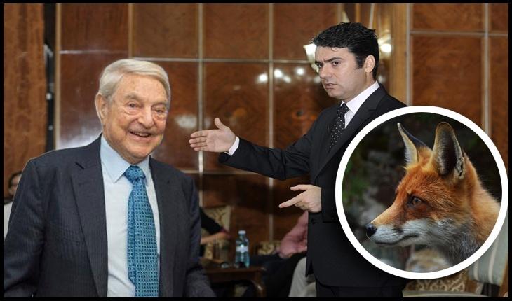 (VIDEO) Vulpea fără cetățenie a lui Remus Pricopie vrea la Palatul Victoria?, Foto original: gov.ro