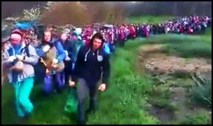 Degradant! Imagini răscolitoare cu românii duși pe plantațiile de ceapă din Germania, Foto: captură facebook