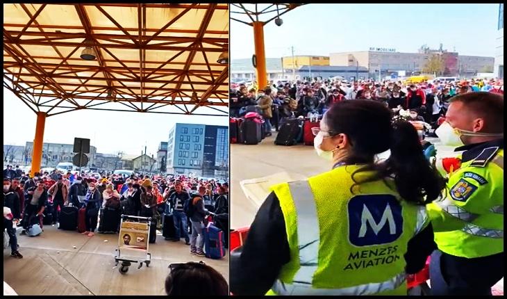 Dacă pleci să culegi sparanghelul pentru madam Merkel nu mai există coronavirus?, Foto: captură video Facebook / Catalina Porumbel