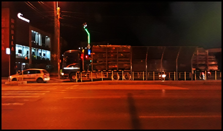 """În loc să vâneze pensionarii pe străzi,""""organele"""" nu mai bine ar vâna camioanele cu lemn tăiat ilegal?"""