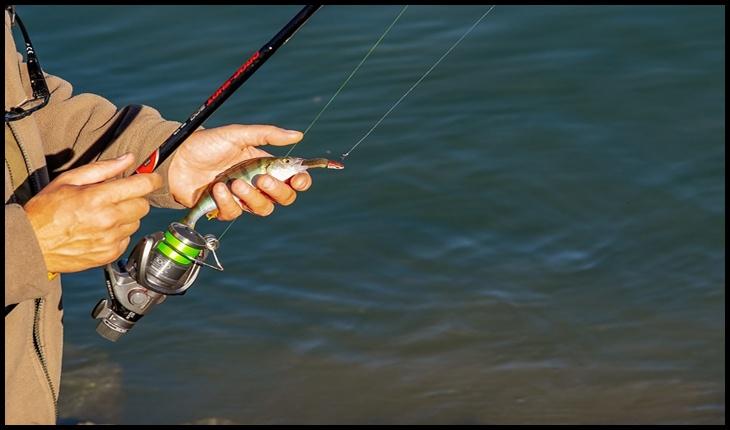 Rar s-a mai văzut guvern atât de tolomac: guvernul PNL dă voie pescarilor să pescuiască în plină prohibiţie!?