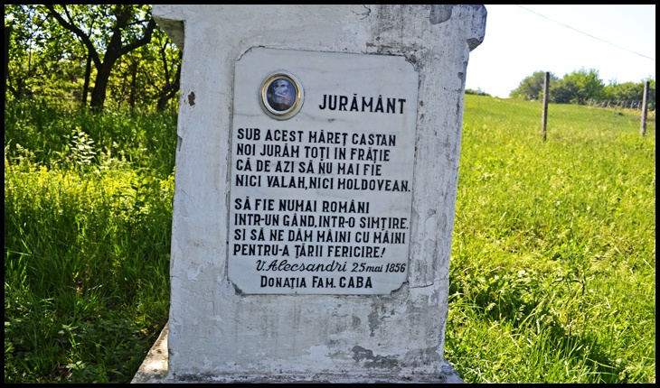 Castanul Unirii și jurământul sacru de la 25 Mai 1856 de sub arborele declarat monument istoric, Foto: © Glasul.info / Fandel Mihai