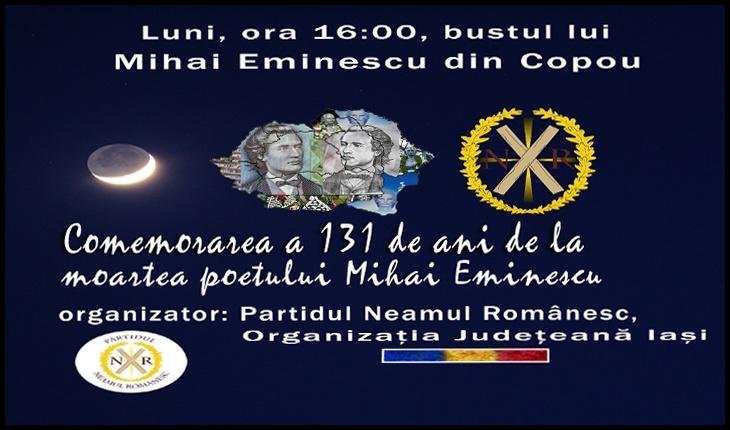 Partidul Neamul Românesc Iași