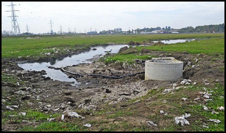 Dezastru ecologic la mică distanță de Stația de tratare a apei Chirița, care alimentează aproape jumătate din orașul Iași