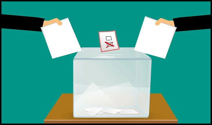 """Opțiuni de vot în starea de """"p(l)andemie"""""""