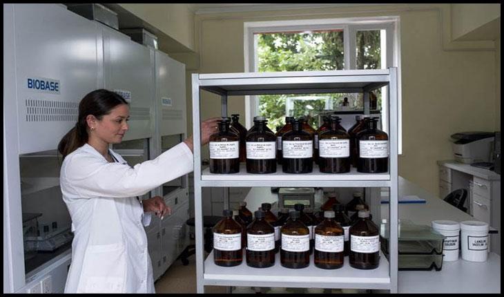 Sistemul de siguranță alimentară din Republica Moldova devine mai performant, Foto: ©FAO/ Dorin Goian