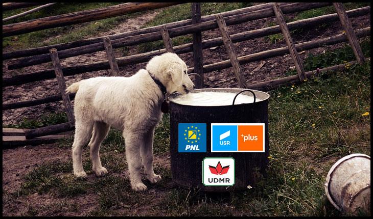 """Toţi românii se înfruptă cu lapte şi miere, câinii au colaci în coadă: Guvernul """"Nu se poate"""" a îngheţat ţara în plină primăvară!"""