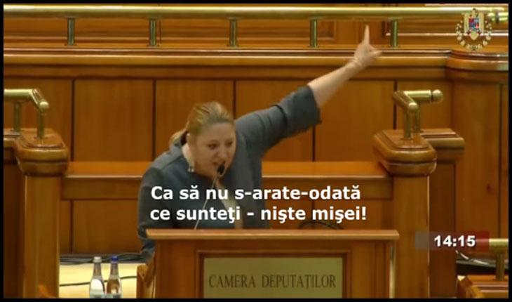 """(VIDEO) Spectacol eminescian în Parlamentul României. Diana Iovanovici-Șoșoacă: """"Ca să nu s-arate-odată ce sunteţi - nişte mişei!"""""""