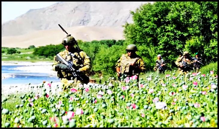Arcul de Triumf neprimitor pentru paradele militare de 1 Decembrie, dar foarte primitor cu mercenarii ce au păzit în Afganistan câmpurile de maci?, Foto: captura youtube